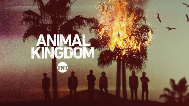 Animal Kingdom tv show poster tnt
