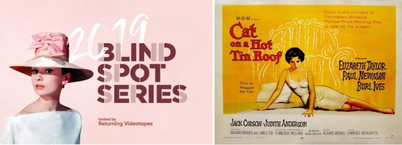 blind spot cat on a hot tin roof poster review